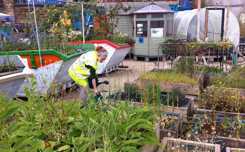 King's Cross Skip Garden in London - a moveable community garden