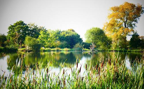 1414-secret-lake-1-rs