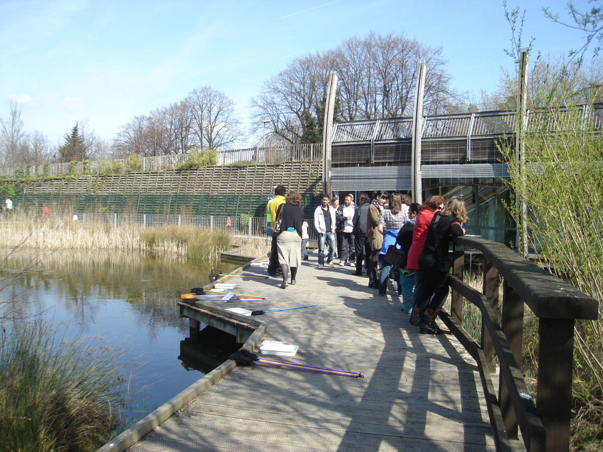The group during their study tour to the pavilions in Mile End Park